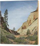 Checkerboard Mesa Wood Print