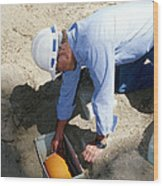 Checking Seismometer Wood Print