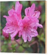 Cheerful Rain Wood Print