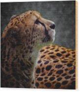 Cheetah Closeup Portrait Wood Print