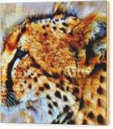 Cheetah IIi Wood Print