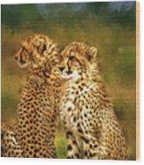 Cheetah Siblings Wood Print