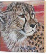 Blaa Kattproduksjoner       Cheetahs Face Wood Print