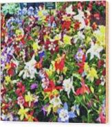 Chelsea Flower Show Wood Print