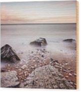 Chemical Beach Tide Wood Print