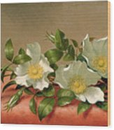 Cherokee Roses Wood Print by Martin Johnson Heade