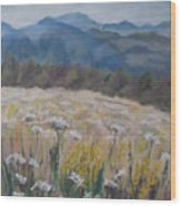 Cherokee Wildflowers Wood Print