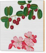 Cherries And Cherry Blossoms Wood Print