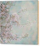 Cherry Blossom Dreams Wood Print