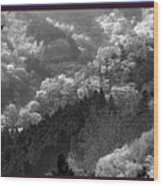 Cherry Blossom Season In Japan Mountain Hills Trees Photography By Navinjoshi At Fineartamerica.com  Wood Print