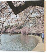 Cherry Blossom Stroll Around The Tidal Basin Wood Print