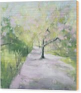 Cherry Blossom Tree Central Park Bridle Path Wood Print