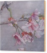 Japanese Cherry Blossom Tree Wood Print