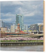 Cherry Blossom Trees At Portland Waterfront Park Wood Print