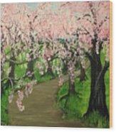 Cherry Blossom Walk Wood Print