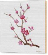 Cherry Blossoms 2f Wood Print