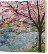 Cherry Blossoms And Bridge 3 201730 Wood Print