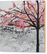 Cherry Blossoms And Bridge Meadowlark Botanical Gardens 201728 Wood Print