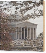 Cherry Blossoms And The Jefferson Memorial Wood Print