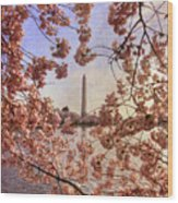Cherry Blossoms And The Washington Monument Wood Print by Lois Bryan