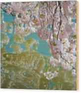 Cherry Blossoms Close Up Six Wood Print