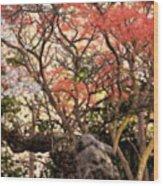 Cherry Blossoms II Wood Print