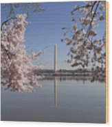Cherry Blossoms Monument Wood Print