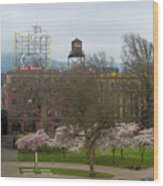 Cherry Blossoms Trees In Portland Old Town Wood Print