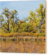 Cherry Creek Pond In Autumn Wood Print