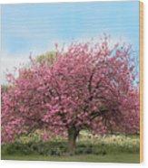 Cherry Grove Wood Print