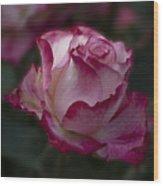 Cherry Parfait Rose Wood Print