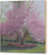 Cherry Tree Madison Square Park Wood Print