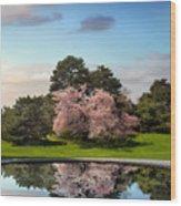 Cherry Tree Reflections Wood Print