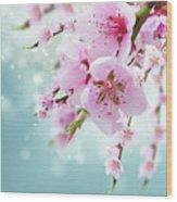Cherry Tree Twig On Blue Wood Print