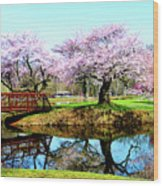 Cherry Trees In The Park Wood Print