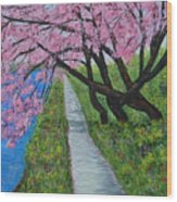 Cherry Trees- Pink Blossoms- Landscape Painting Wood Print