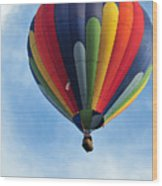 Chester County Balloon Fest 61 Wood Print