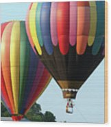 Chester County Balloon Fest 8765 Wood Print