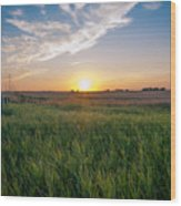 Chestermere Sunset Wood Print by Adnan Bhatti