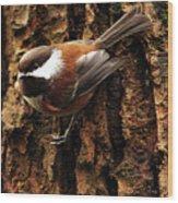 Chestnut-backed Chickadee On Tree Trunk Wood Print