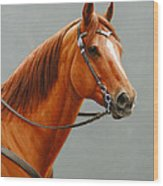 Chestnut Dun Horse Painting Wood Print by Crista Forest