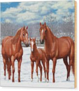 Chestnut Horses In Winter Pasture Wood Print by Crista Forest