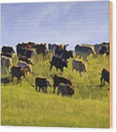 Cheyenne Cattle Roundup Wood Print