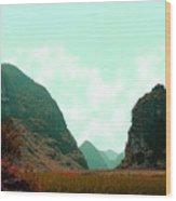 Chi Bai No II Wood Print