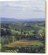 Chianti Region In Italy Wood Print by Gregory Ochocki and Photo Researchers