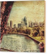 Chicago Approaching The City In June Textured Wood Print