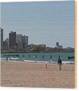 Chicago Beach Panorama Wood Print