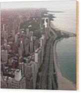 Chicago Coastline Wood Print