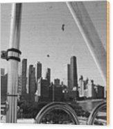 Chicago Ferris Wheel Skyline Wood Print