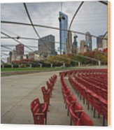 Chicago From Pritzker Wood Print